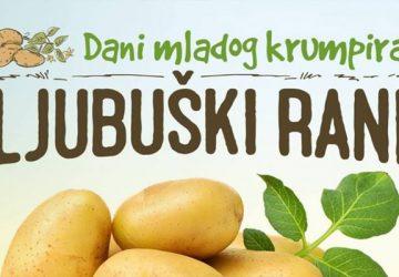 dani_mladog_krumpira