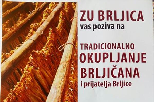 druzenje_brljica1