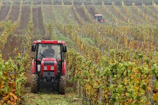 traktor-vinograd