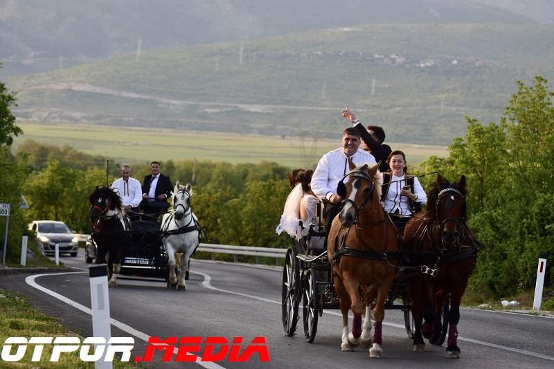 svati-damjanovici-11621-21